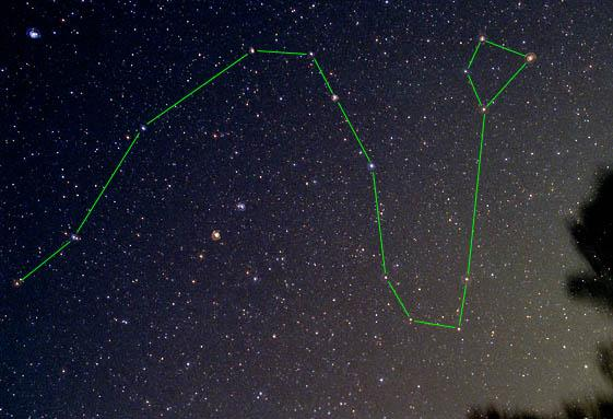 Draco Constellation.jpg