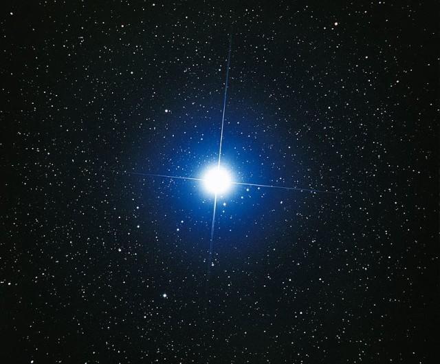 Dog-Star-640x529.jpg